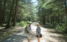 rando trekking provence france